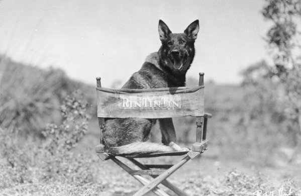 A big star of the silent era (and beyond) sits.