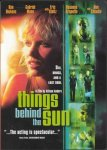 Things Behind the Sun film poster