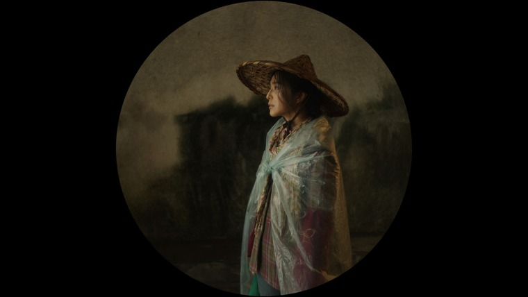 Wo bu shi Pan Jinlian (I Am Not Madame Bovary, 2016)