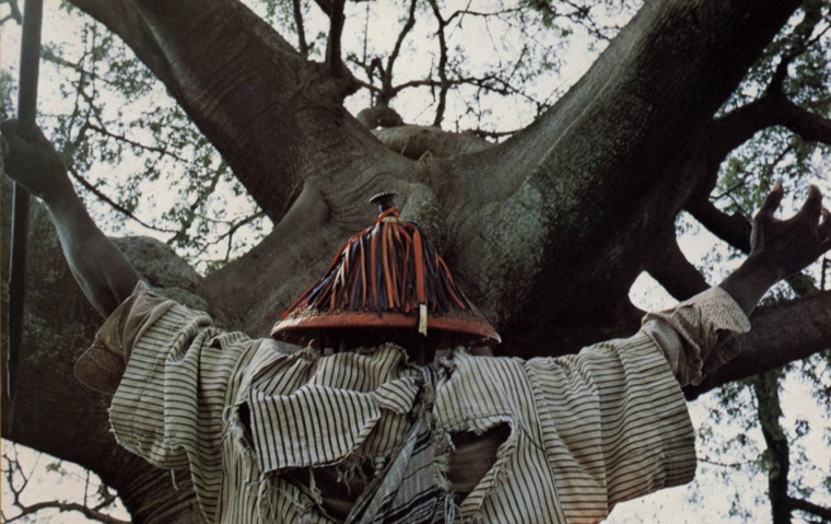A witch doctor stands in front of a tree